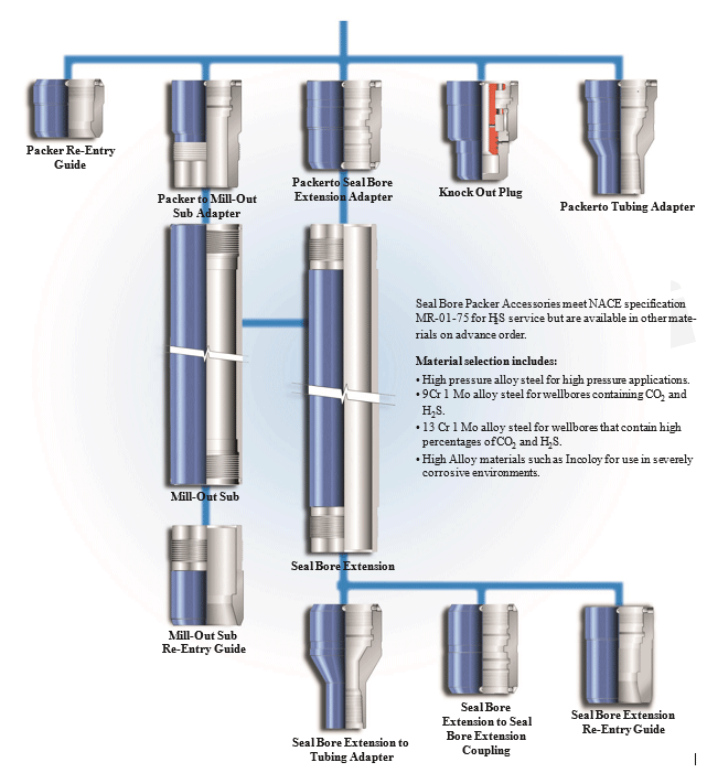 Common-Seal-Bore-Packer-Component-Configurations